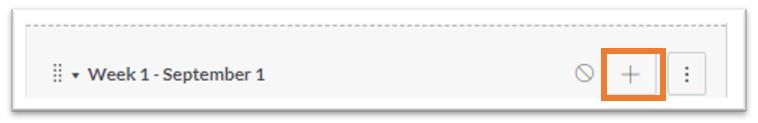 The add item button in a module