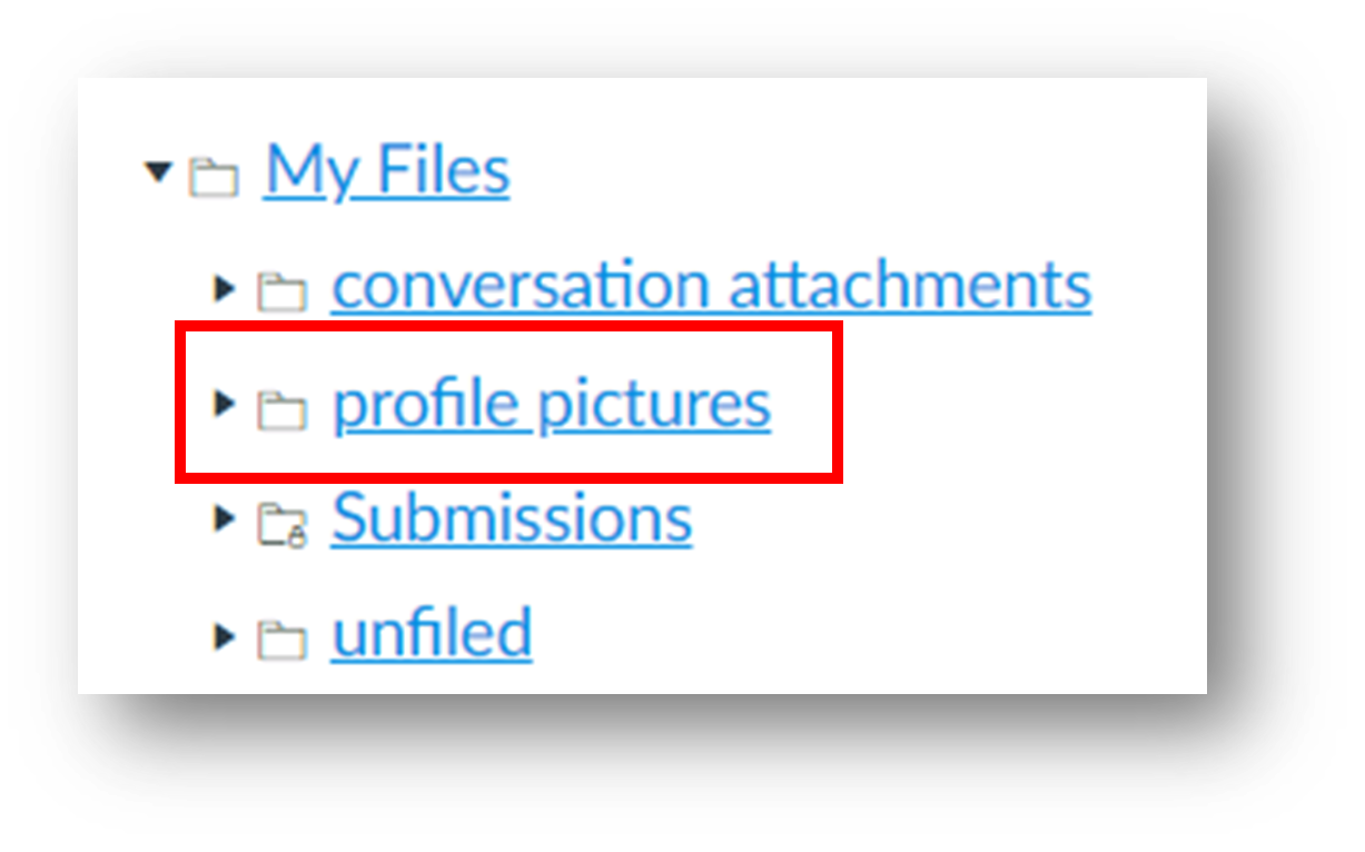 the profile pictures folder