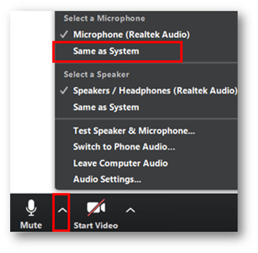 Arrow at the right of Mute button in Zoom dashboard with a menu. Same as System is highlighted in the menu.