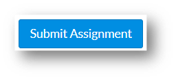 Submit Assignment button